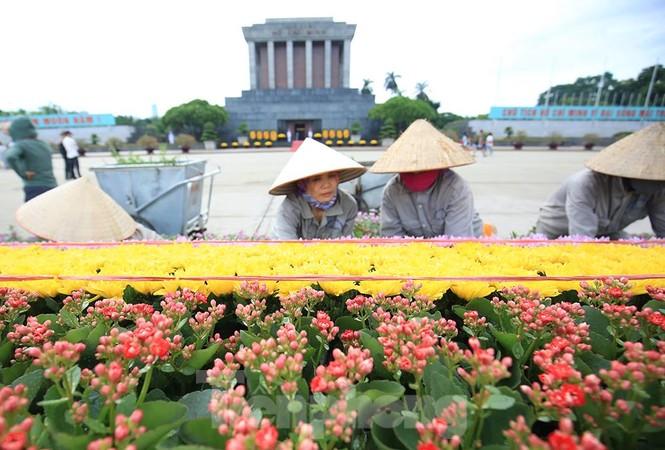 Những người thợ tận tâm dệt những thảm hoa, vườn cảnh quanh Lăng Bác - ảnh 8