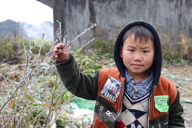 Xuất hiện băng tuyết tại xã biên giới Mèo Vạc - Hà Giang - ảnh 5