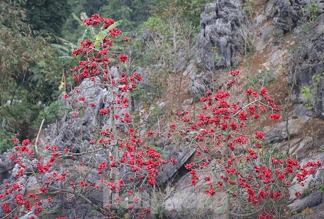 Trẩy hội chùa Hương, ngẩn ngơ ngắm hoa gạo 'thắp lửa' bên suối Yến - ảnh 9