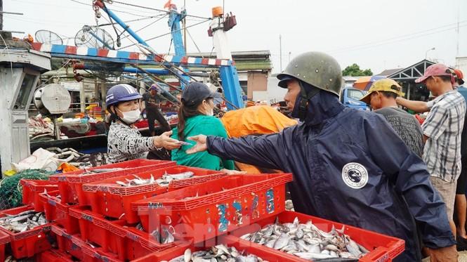 Ngư dân TT-Huế hối hả với những mẻ cá biển cuối cùng trước bão - ảnh 5