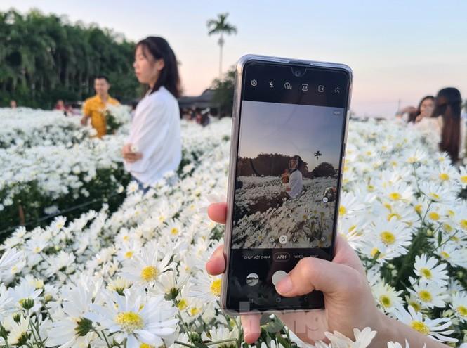 """Nhà vườn ở Hải Phòng bội thu nhờ dịch vụ """"check-in"""" cùng cúc họa mi - ảnh 10"""