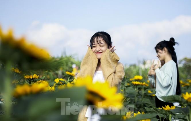 """""""Lạc"""" giữa cánh đồng hoa đang độ khoe sắc ngày xuân - ảnh 11"""