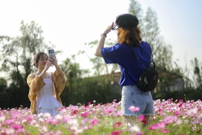 """""""Lạc"""" giữa cánh đồng hoa đang độ khoe sắc ngày xuân - ảnh 5"""