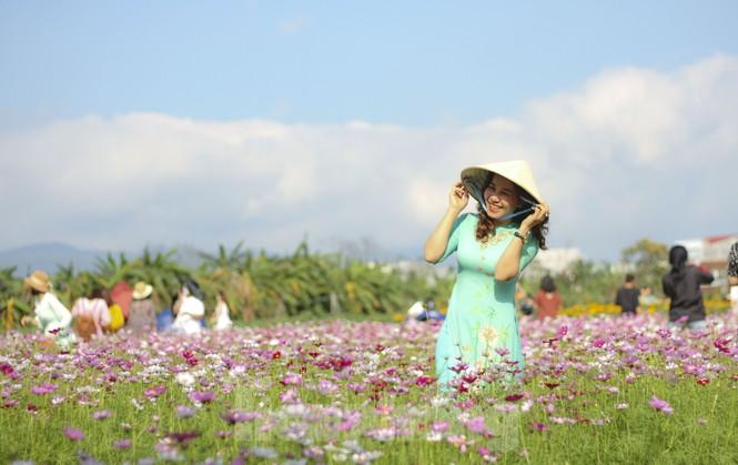 """""""Lạc"""" giữa cánh đồng hoa đang độ khoe sắc ngày xuân - ảnh 8"""