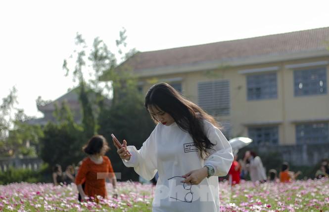 """""""Lạc"""" giữa cánh đồng hoa đang độ khoe sắc ngày xuân - ảnh 9"""