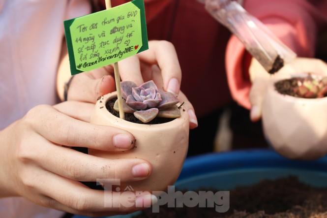 Giới trẻ Đà Nẵng hào hứng với thử thách sống xanh - ảnh 5