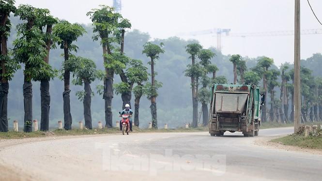 Hàng hoa sữa chuyển từ Hà Nội lên bãi rác Nam Sơn giờ ra sao? - ảnh 3