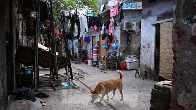 Nắng nóng đeo bám người dân xóm ngụ cư Hà Nội - ảnh 12
