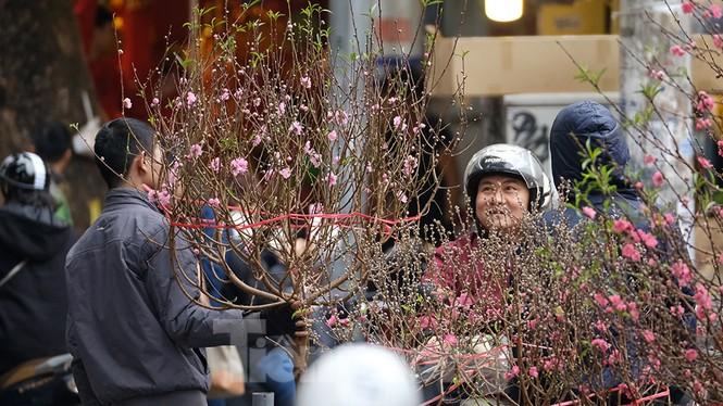Nhộn nhịp chợ hoa tết lâu đời nhất Hà Nội - ảnh 1