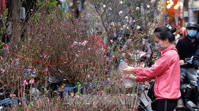Nhộn nhịp chợ hoa tết lâu đời nhất Hà Nội - ảnh 7