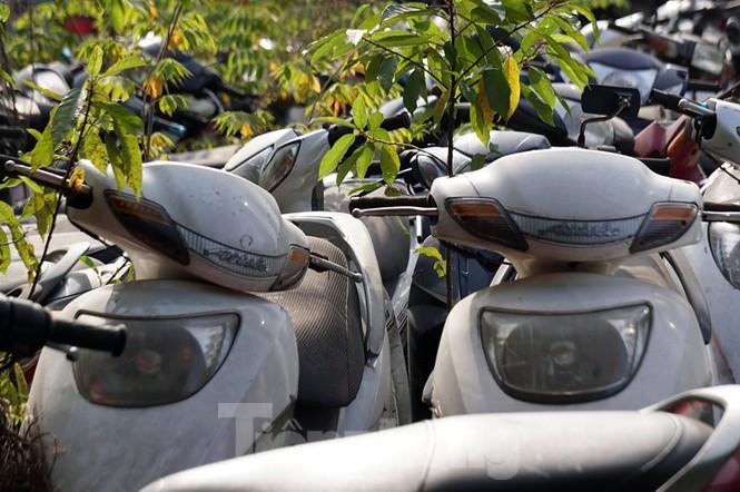 Porsche, Lexus... tiền tỷ phủ bụi, 'bỏ xó' trong bãi giữ xe ở Hà Nội - ảnh 3