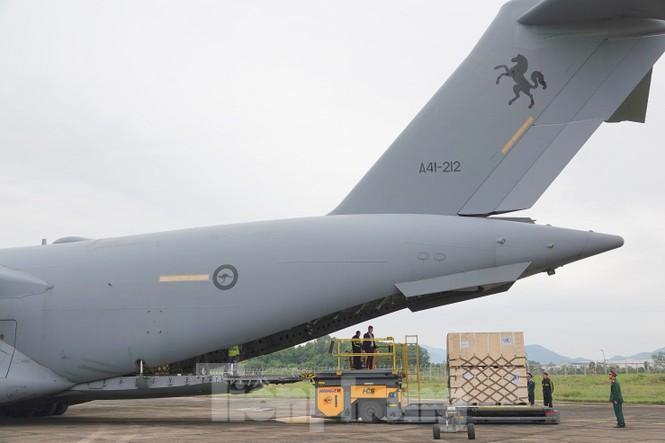 Cận cảnh vận tải cơ C-17A chở bác sĩ mũ nồi xanh Việt Nam sang Nam Sudan - ảnh 8