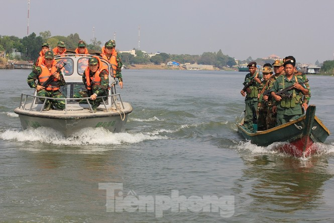 Bộ đội Biên phòng thu giữ 11,42 tấn ma túy, 445 khẩu súng - ảnh 3