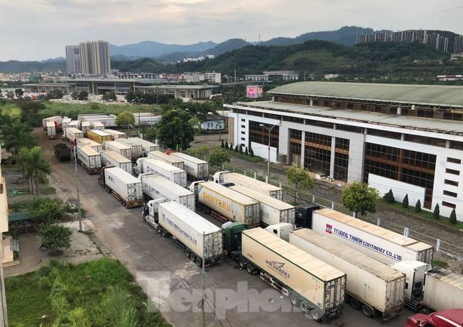 Trung Quốc dùng máy soi hàng, hàng trăm xe container Thanh Long ùn ứ ở cửa khẩu - ảnh 3