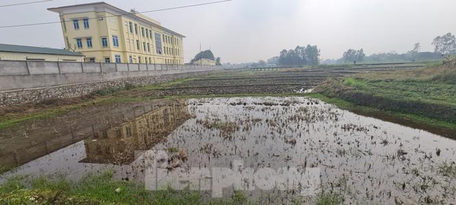 Dự án khu đô thị hơn 4 nghìn tỷ 'bất động', nhà đầu tư lao đao - ảnh 2