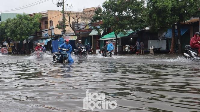 Đà Nẵng: Mưa như trút nước, đường phố thành sông, người dân vô tư bắt cá giữa đường - ảnh 2
