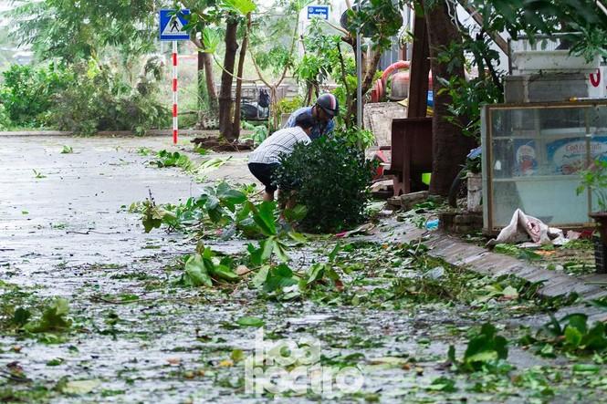 Đà Nẵng sau cơn cuồng phong bão số 9: Mỗi người một tay dọn dẹp cảnh ngổn ngang - ảnh 1