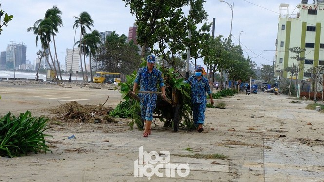 Thành phố ngổn ngang, người dân Đà Nẵng chung tay khắc phục hậu quả sau bão số 9 - ảnh 1