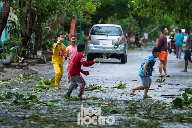 Đà Nẵng sau cơn cuồng phong bão số 9: Mỗi người một tay dọn dẹp cảnh ngổn ngang - ảnh 11