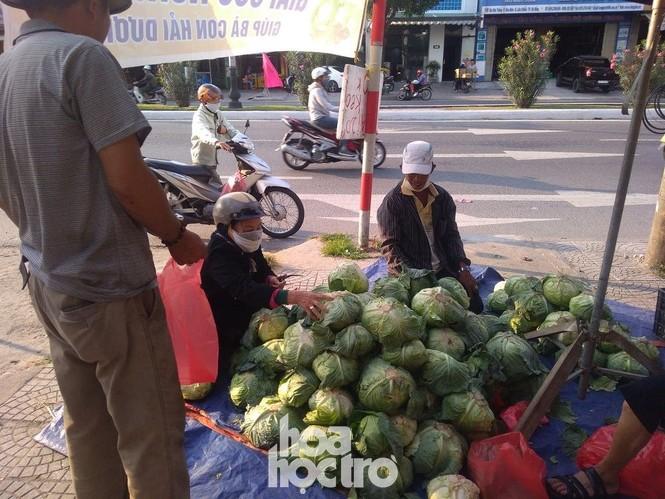 Đưa tay đây nào, Đà Nẵng giúp Hải Dương giải cứu nông sản nhé! - ảnh 4