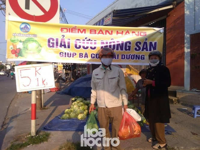 Đưa tay đây nào, Đà Nẵng giúp Hải Dương giải cứu nông sản nhé! - ảnh 6