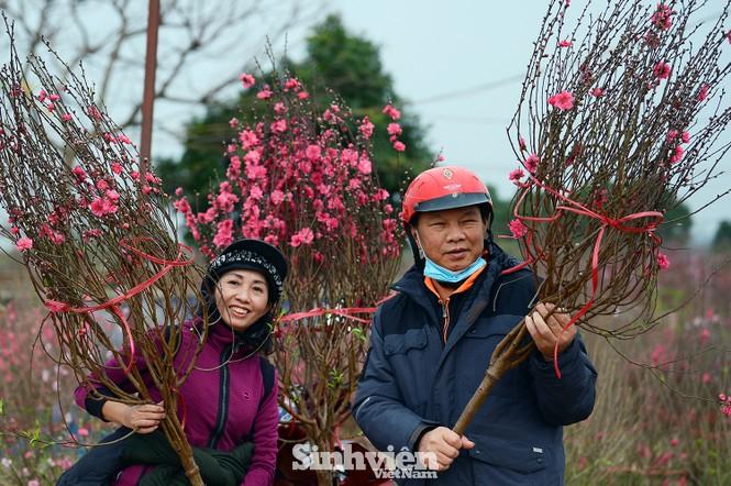 """Cận cảnh vườn đào Nhật Tân được giới trẻ """"Check-in"""" ngày cuối năm - ảnh 5"""