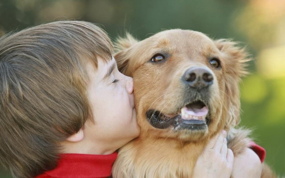 Cẩn trọng thú nuôi gây tai nạn thương tích, thậm chí khiến trẻ tử vong - vietllot 655