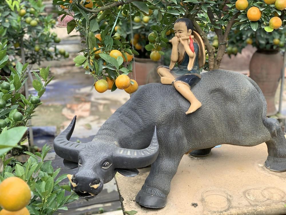 Quất bonsai mini trĩu quả hút khách dịp Tết Dương lịch