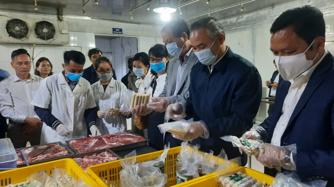 Chuỗi liên kết chăn nuôi phát huy hiệu quả, tăng nguồn cung thực phẩm cho dịp Tết