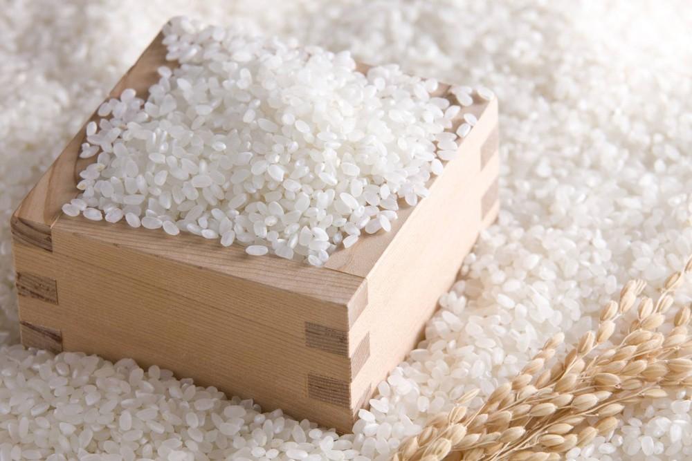 Thị trường ngày 26/1: Cây cảnh giả tràn lan, săn lùng gạo Séng Cù làm quà biếu Tết