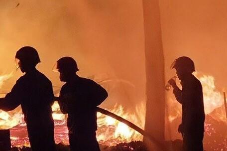 Vườn cây rộng 10.000m2 ở Bình Phước bị lửa thiêu rụi...