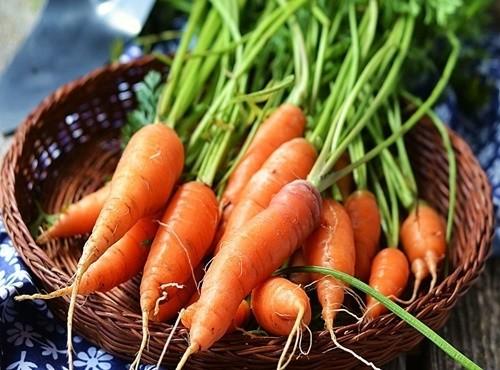 Cà rốt thành 'độc dược' nếu ăn theo cách này | Sức khỏe | Báo điện tử Tiền Phong
