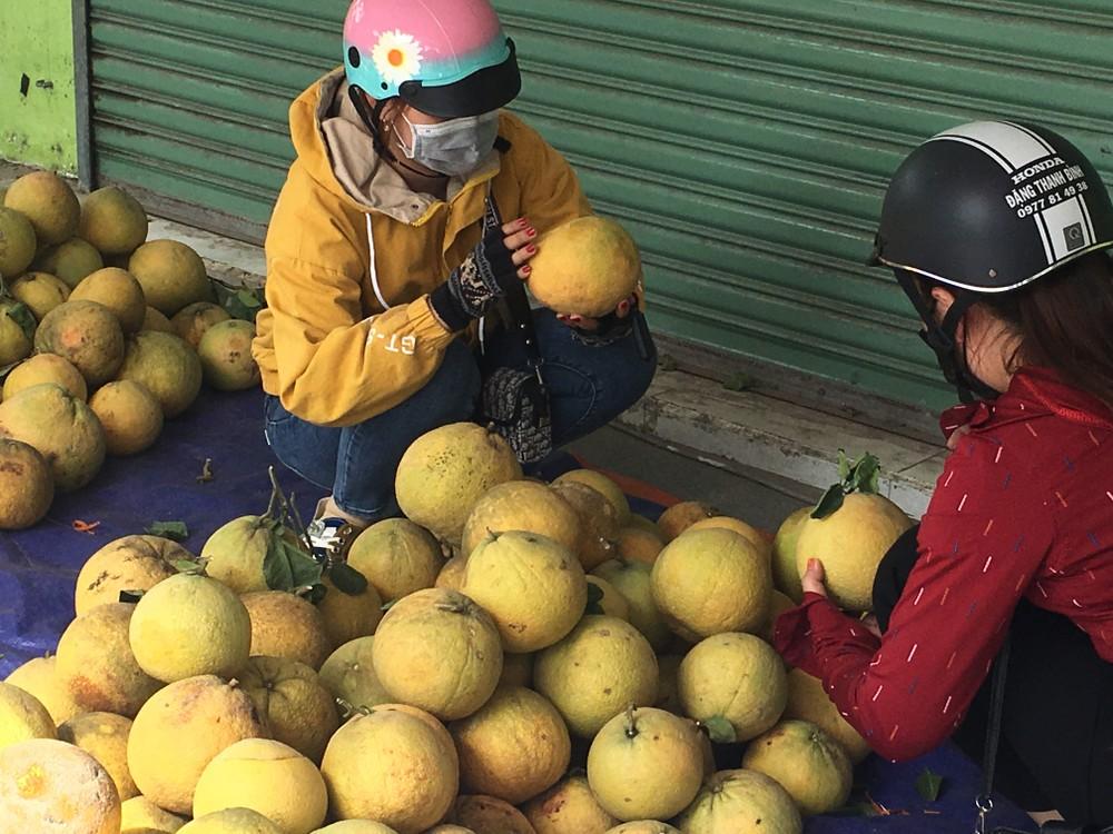 Hàng trăm tấn bưởi chờ ''giải cứu'' ở Đồng Nai