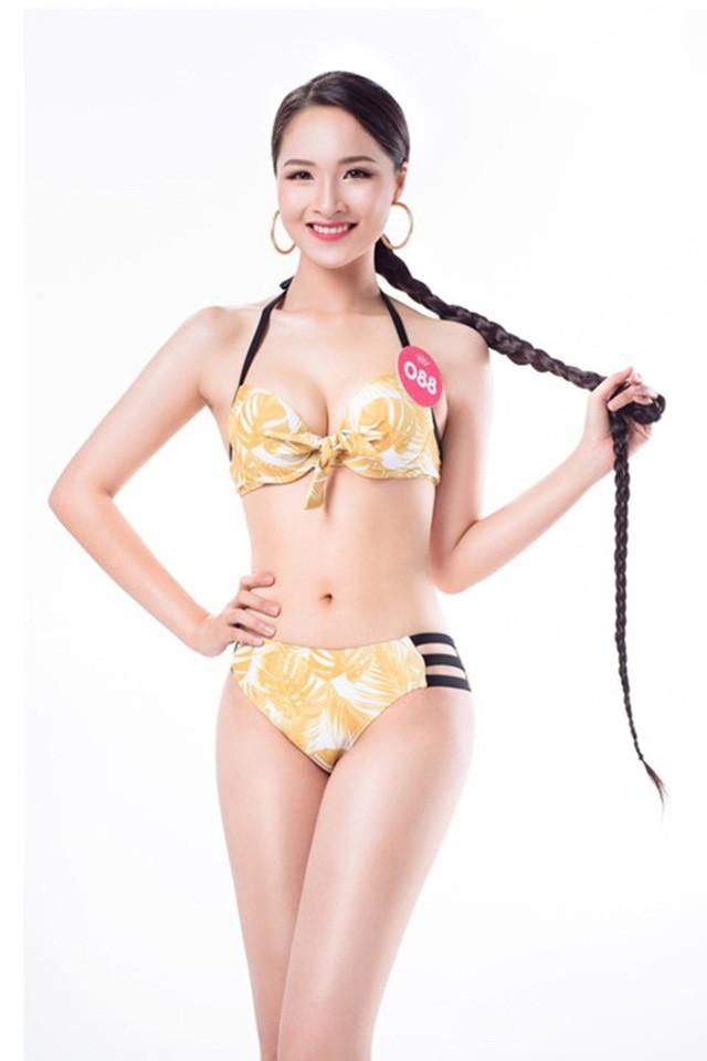 Những cô gái có mái tóc đẹp nhất Hoa hậu Việt Nam qua các mùa ảnh 16