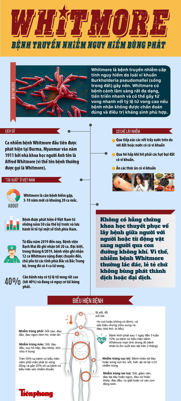 Whitmore - Bệnh truyền nhiễm nguy hiểm 'tái xuất' ở Việt Nam ảnh 1