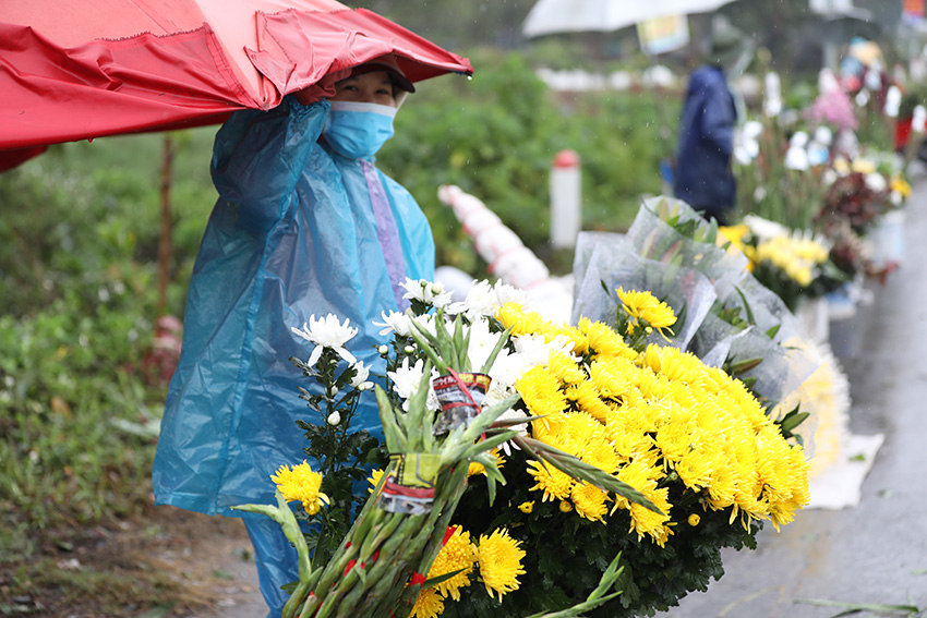'Thủ phủ' hoa lớn nhất miền bắc tấp nập người mua bán ngày giáp Tết ảnh 1