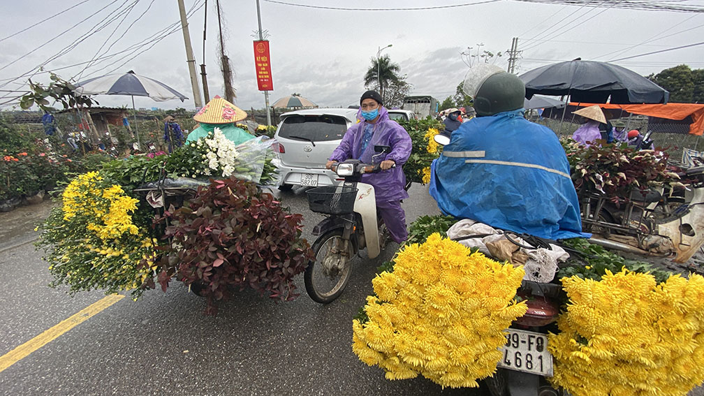 'Thủ phủ' hoa lớn nhất miền bắc tấp nập người mua bán ngày giáp Tết ảnh 11
