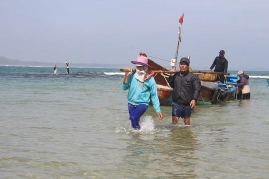 Giáp Tết ngư dân Quảng Ngãi trúng đậm 'lộc biển' ảnh 8