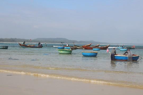 Giáp Tết ngư dân Quảng Ngãi trúng đậm 'lộc biển' ảnh 10