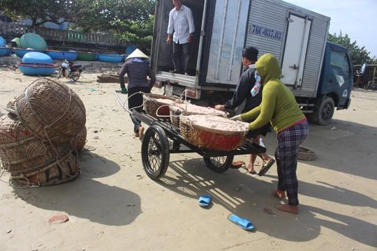 Giáp Tết ngư dân Quảng Ngãi trúng đậm 'lộc biển' ảnh 9