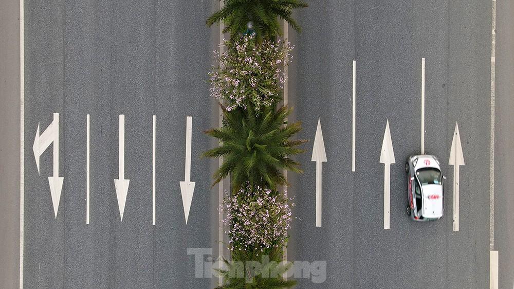 'Bay' trên đại lộ Võ Nguyên Giáp, mê mẩn ngắm hoa ban Tây Bắc ảnh 11