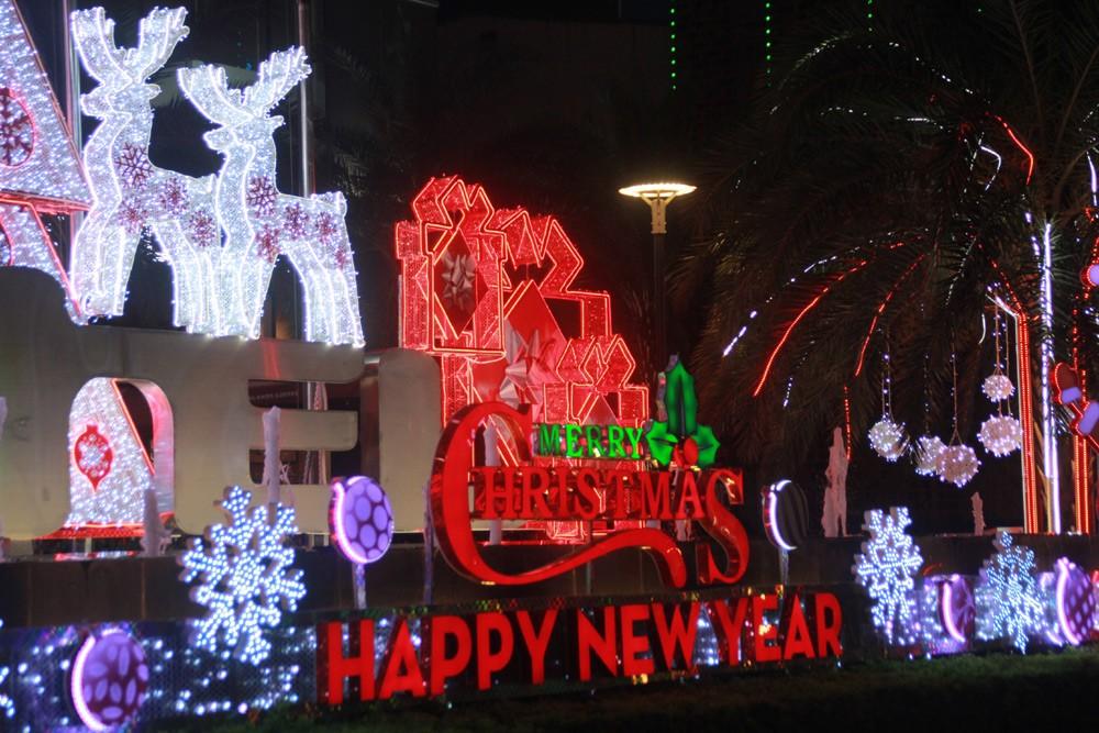Phố Sài Gòn lung linh đón Giáng sinh ảnh 11