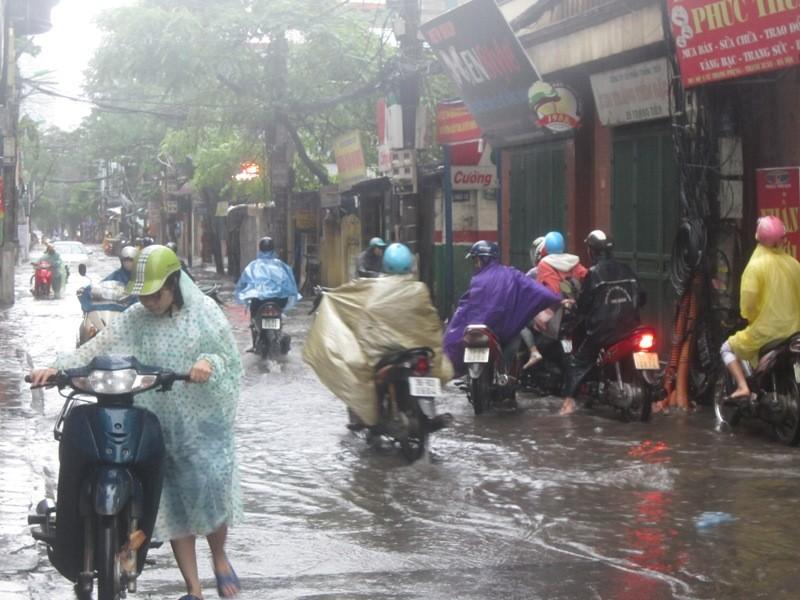Sau cơn mưa lớn, Hà Nội lại... lội ảnh 3