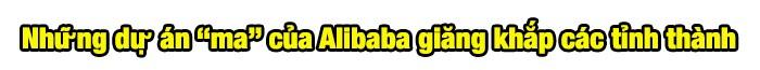 Chủ tịch Địa ốc Alibaba và những dự án 'ma' khắp các tỉnh thành ảnh 2
