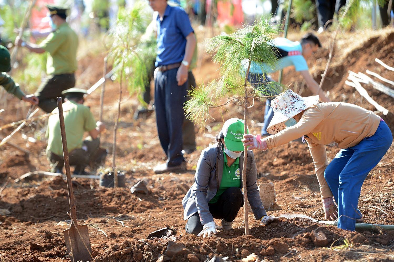 Tiền Phong Marathon 2021 chung tay vì một Việt Nam xanh ảnh 13