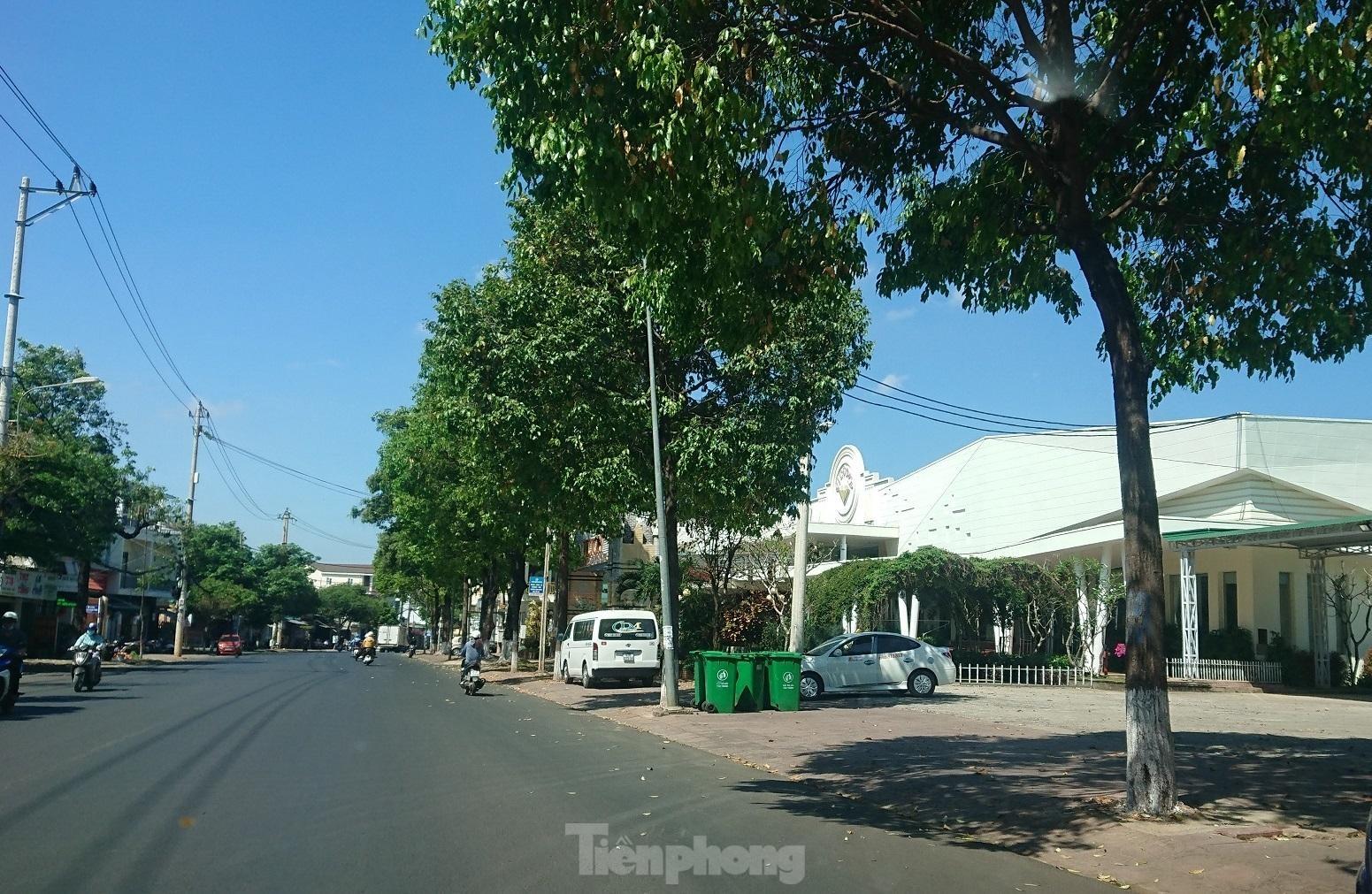 Cận cảnh hàng loạt đất công cho thuê trái phép ở Đắk Lắk ảnh 1