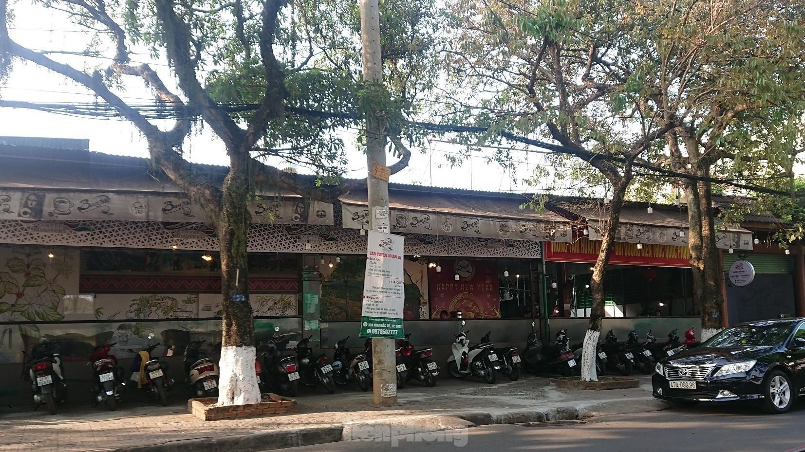 Cận cảnh hàng loạt đất công cho thuê trái phép ở Đắk Lắk ảnh 9