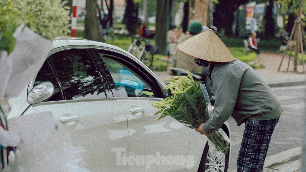 Hà Nội đắm mình trong sắc trắng của hoa loa kèn ảnh 8