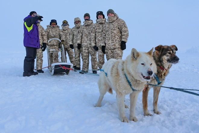 Quân khuyển đặc biệt của lính dù Nga ở Bắc Cực ảnh 3