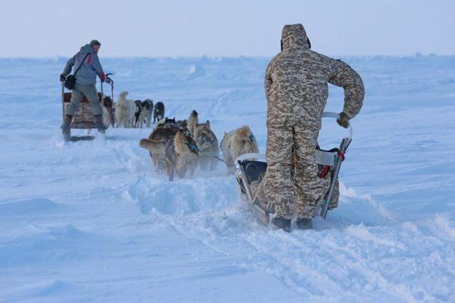 Quân khuyển đặc biệt của lính dù Nga ở Bắc Cực ảnh 6